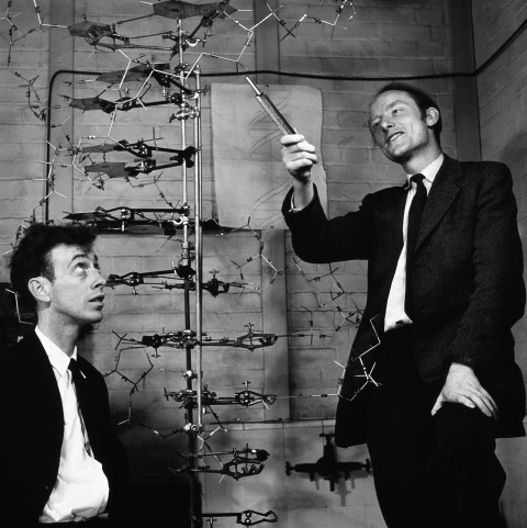 Watson and Crick with the DNA model.