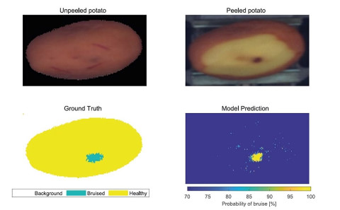 """Wannes Voorend: """"The Colruyt Group and KU Leuven developed a test. They wanted to see if hyperspectral image processing can solve the problem."""""""